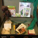 Das Foto zeigt einen Koffer mit verschiedenen Broschüren, Wolle und Karten